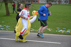Meia maratona 2017 da leitura - 19 de março de 2017 Imagens de Stock Royalty Free
