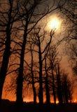 Meia-noite em um mundo perfeito foto de stock