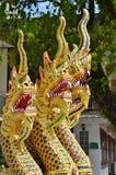 Meia serpente do ouro, metade-dragões decorando a escadaria do Naga a Sangharam Wat Wichit, Phuket, Tailândia Fotografia de Stock Royalty Free