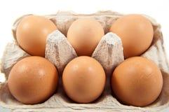 Meias dúzia ovos frescos Fotos de Stock Royalty Free
