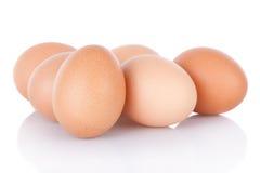 Meias dúzia ovos marrons da galinha Foto de Stock Royalty Free