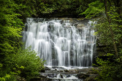 Meigs Falls in the Great Smoky Mountains National Park. On a lovely spring morning Royalty Free Stock Images