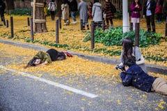 Meiji Jingu Gaien foto de stock royalty free