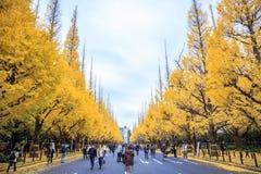 Meiji Jingu Gaien lizenzfreies stockfoto