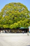 Meiji Jingu relikskrin Arkivfoto