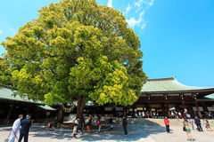 Meiji Jingu Shrine Royalty Free Stock Photography