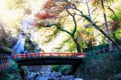 Meiji No Mori Minoh stock afbeeldingen