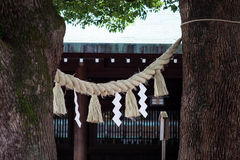 Meiji Shrine, located in Shibuya, Tokyo. TOKYO, JAPAN - AUG 14, 2015: Meiji Shrine, located in Shibuya, Tokyo, is the Shinto shrine that is dedicated to the royalty free stock photos