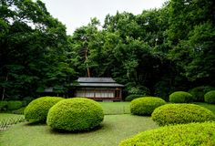 Meiji Shrine Yoyogi Park Tokyo Japon Asie images stock