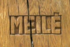Meile, miłość w Litewskim języku Obraz Stock