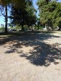 Meilen-quadratischer Park Stockfotos