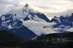 Meili snowberg Lizenzfreie Stockbilder