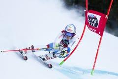 MEILLARD Loic in Audi Fis Alpine Skiing World-Kop Royalty-vrije Stock Foto's