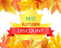 Meilleur Autumn Discount Promo Advertisement sur l'érable Image libre de droits