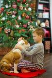 Meilleurs amis bouledogue anglais blanc rouge blond beau de garçon et de chiot appréciant passant le temps les uns avec les autre Photographie stock libre de droits