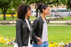 Meilleurs amis de l'appartenance ethnique africaine du nord en parc Image stock