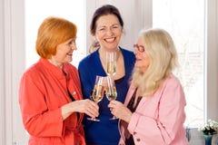Meilleurs amis de maman appréciant des verres de vin blanc Photos libres de droits