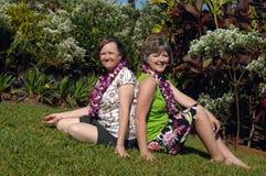 Meilleurs amis en Hawaï Image stock