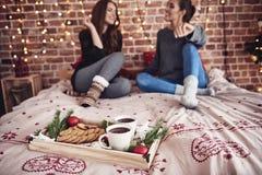 Meilleurs amis pendant le temps de Noël Photographie stock