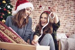 Meilleurs amis pendant le temps de Noël Photo libre de droits