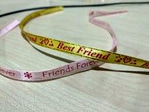 Meilleurs amis pour l'amour Photo libre de droits