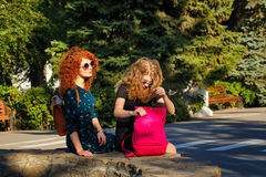 Meilleurs amis pour une promenade en parc Photos stock