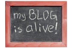 Mein Blog ist lebendig Lizenzfreie Stockfotografie