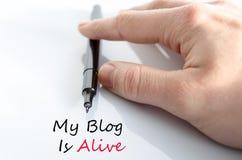 Mein Blog ist lebendiges Textkonzept Stockfotos