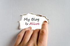 Mein Blog ist lebendiges Textkonzept Lizenzfreie Stockfotografie