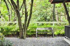 Mein Haus im Wald lizenzfreie stockfotos