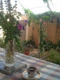 Mein lovel Garten Stockbild