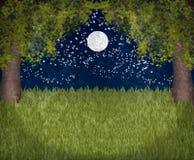 Mein süßer Mondscheingarten Stockbilder