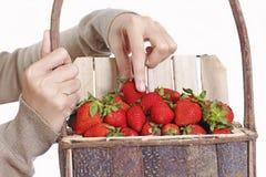 Meine Erdbeeren Lizenzfreie Stockbilder