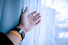 Meine Hand ist die Aufwartung, die etwas, in das Leben zu kommen vereinbart wird stockbilder