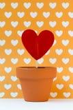 Meine Liebe für Sie ist, Gelb wachsend Stockfotografie