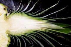 Meio abacaxi Foto de Stock Royalty Free
