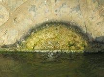 Meio círculo da corrosão verde na fonte imagem de stock royalty free