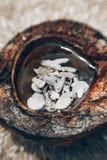 Meio coco com shell do mar para dentro no fundo de pedra Foto de Stock