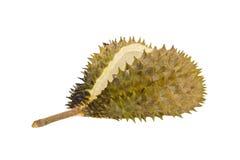 Meio durian descascado reviravolta Imagem de Stock Royalty Free