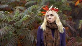 Meio retrato do comprimento da fêmea nova no parque do outono fotografia de stock royalty free