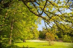 Meise Botanic Garden stock image
