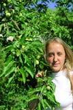 Meisje in appel-boom Stock Fotografie