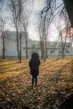 Meisje bij herfst die in blauwe kleren in het park de onderzoeken royalty-vrije stock afbeelding