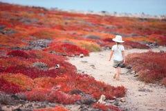 Meisje bij het mooie openlucht plaatsen Royalty-vrije Stock Foto