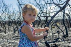 Meisje binnen in blauwe kleding in gebrand bos na het verstand van de struikbrand royalty-vrije stock afbeeldingen