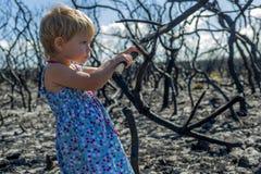 Meisje binnen in blauwe kleding in gebrand bos na het verstand van de struikbrand stock afbeeldingen