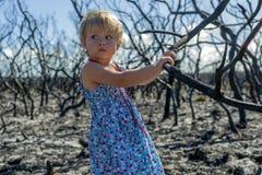 Meisje binnen in blauwe kleding in gebrand bos na het verstand van de struikbrand royalty-vrije stock fotografie