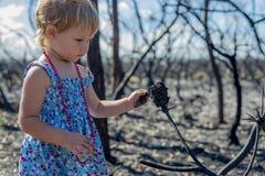 Meisje binnen in blauwe kleding in gebrand bos na het verstand van de struikbrand stock foto
