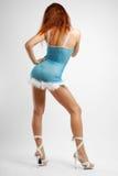 Meisje in blauwe status, achtermening Royalty-vrije Stock Afbeeldingen