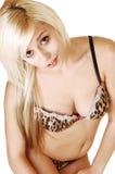Meisje in bruine lingerie. Stock Foto's